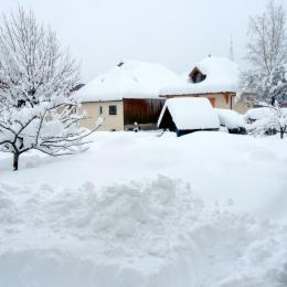 le jardin hiver 2013 - Location de vacances - Saint-Pierre-de-Chartreuse
