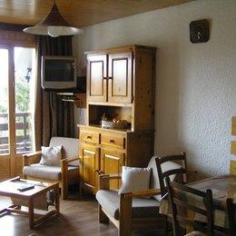 Appartement aux Deux alpes avec grande terrasse plein sud pour profiter pleinement du soleil - Location de vacances - Mont-de-Lans