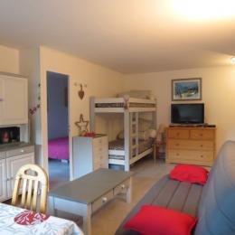 Appartement dans résidence à louer pour vacances montagne et ski aux 2 Alpes - pièce de vie - Location de vacances - les Deux Alpes