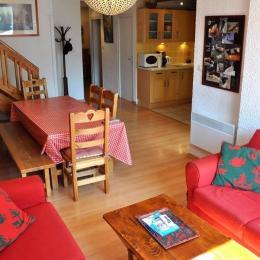 Très grand appartement pied des pistes expo plein sud aux Deux Alpes - Location de vacances - les Deux Alpes