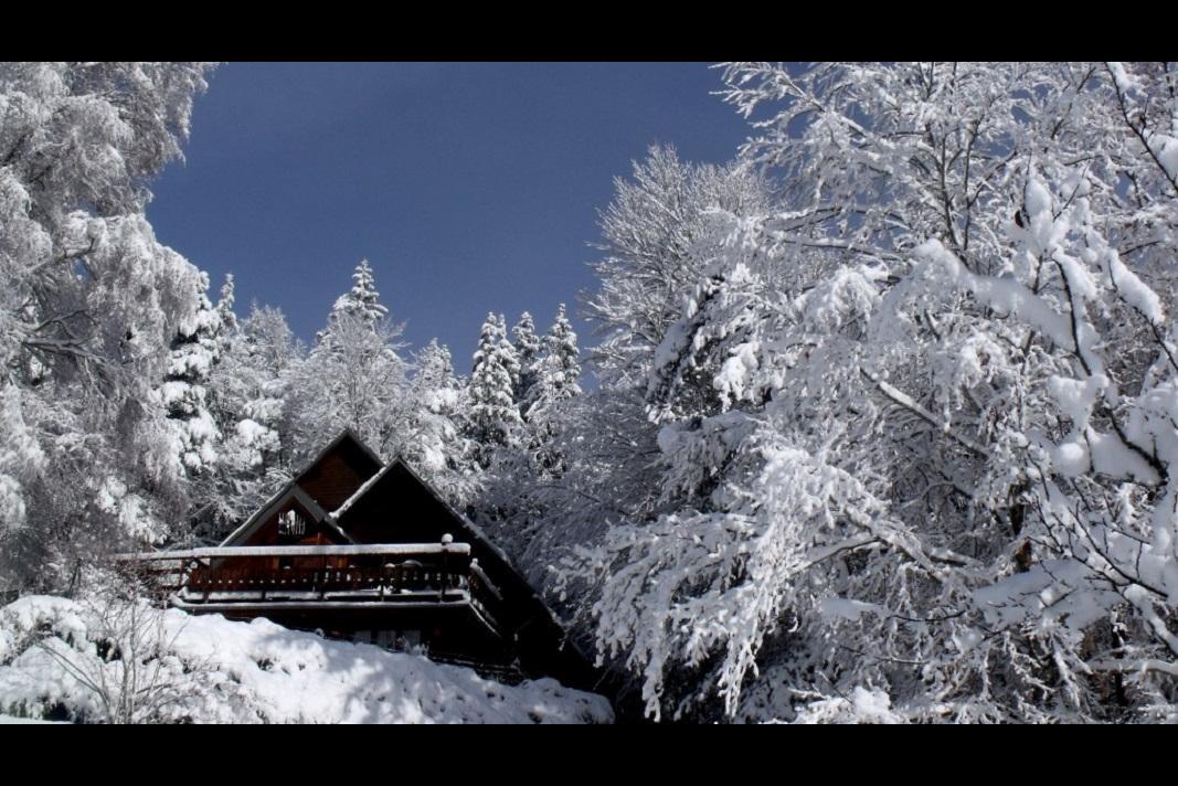Gite à Lans en vercors au coeur de la forêt - Location de vacances - Lans-en-Vercors
