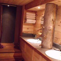 La salle de bain, vue sur la douche - Location de vacances - Lans-en-Vercors