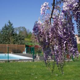 Gîte pour 2 personnes à 15 min de Vienne et 30 min de Lyon en Isère - Location de vacances - Moidieu-Détourbe