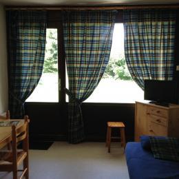Studio en rez-de-jardin - Proche stations Oz-en-Oisans et Vaujany - Domaine skiable de l'Alpe d'Huez - Location de vacances - Allemond