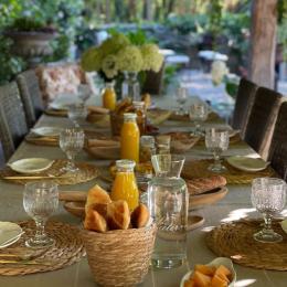 Chambres d'hôtes dans un écrin de verdure à 20 min de Lyon - Salon d'hiver - Ferme de Gringalet - Chambre d'hôtes - Anthon