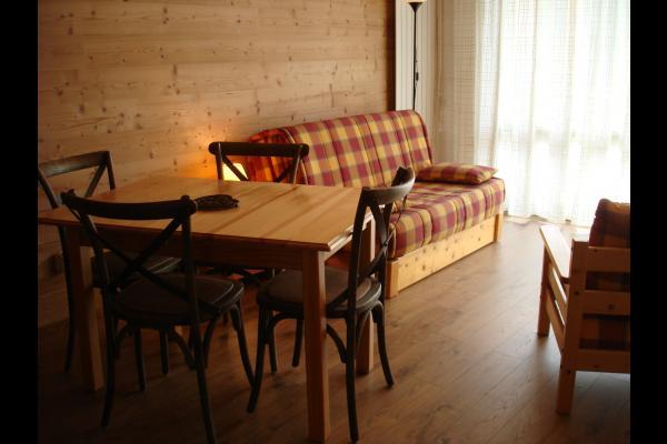 Appartement rénové aux pieds des pistes aux Deux Alpes (Isère) - SEJOUR SALON - Location de vacances - les Deux Alpes