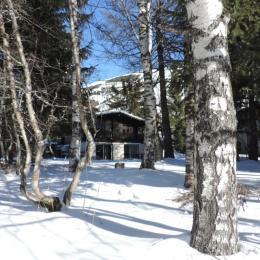 Chalet individuel pour 9 personnes (station les 2Alpes, Isère, Oisans) - Location de vacances - les Deux Alpes