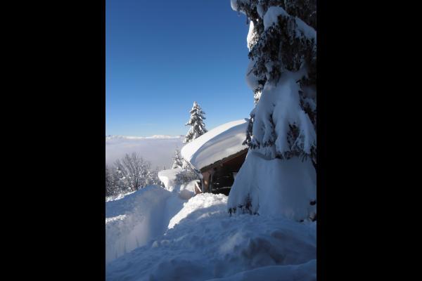 VUE DEPUIS L'ARRIERE DU CHALET - Location de vacances - Chamrousse