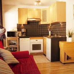 Appartement aux Deux Alpes - pièce de vie Open plan kitchen  - Location de vacances - les Deux Alpes