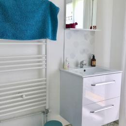 salle d'eau - Location de vacances - La Buisse