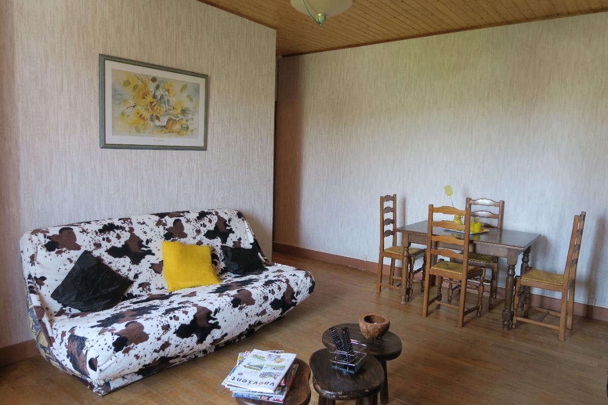 Salle de séjour + coin salon - Location de vacances - Thoiria