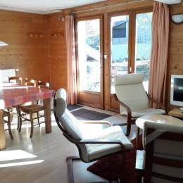 le salon - Location de vacances - Les Rousses