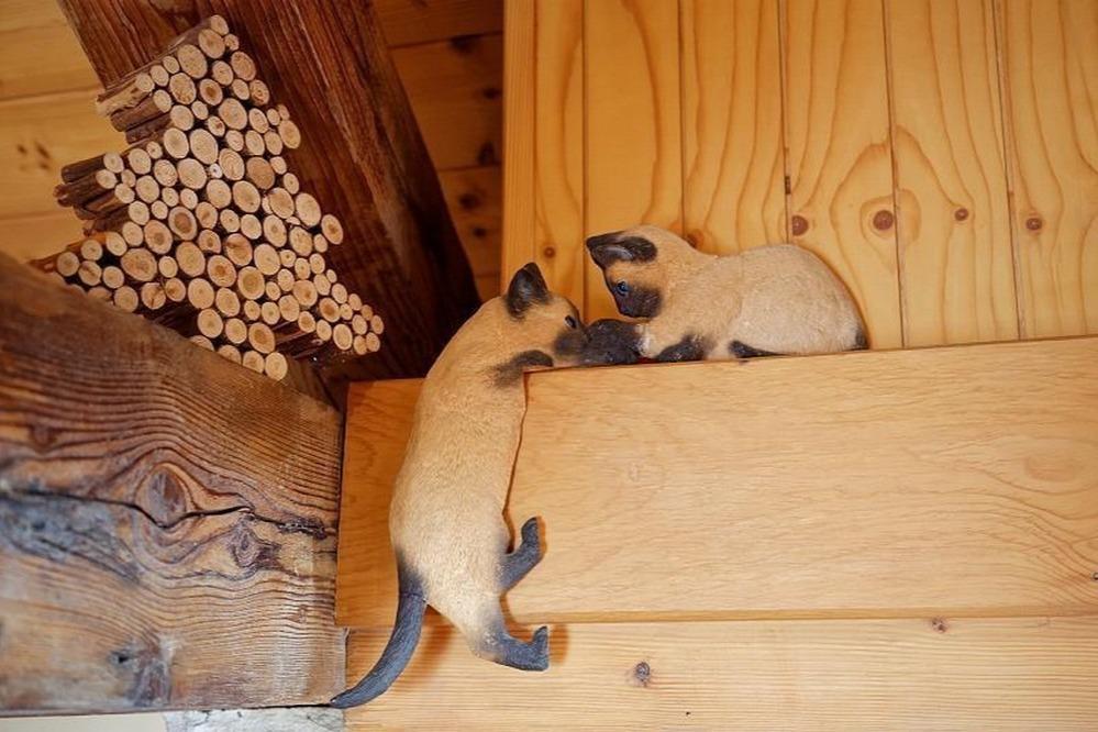 Le salon et la cheminée. - Location de vacances - Morbier