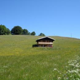 VUE DU VILLAGE SUD - Location de vacances - Lajoux