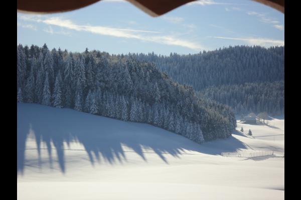 - Location de vacances - Les Molunes