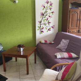le salon - Location de vacances - Lac-des-Rouges-Truites