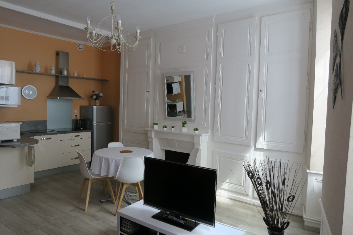 vue du salon et de la cuisine américaine - Location de vacances - Salins-les-Bains