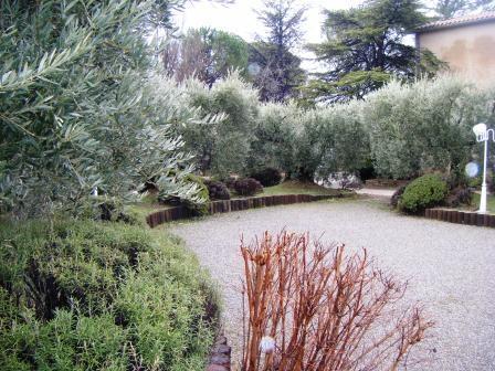 Terrain de pétanque - Location de vacances - Château-Arnoux-Saint-Auban