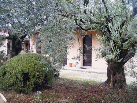 Vue jardin et studio - Location de vacances - Château-Arnoux-Saint-Auban