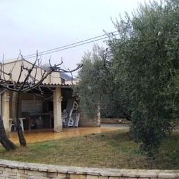 jardin, terrasse couverte - Location de vacances - Château-Arnoux-Saint-Auban