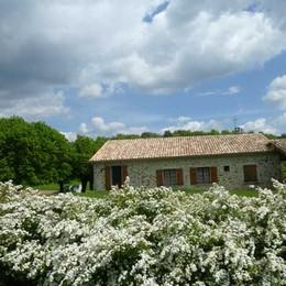la maison et le jardin - Location de vacances - Melve