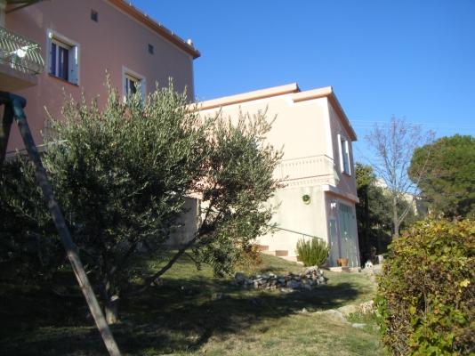 Le jardin et ses oliviers  - Location de vacances - Puimoisson