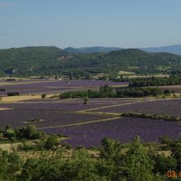 la vue devant le gite - Location de vacances - La Rochegiron