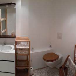 salle d'eau et wc  - Location de vacances - Volonne