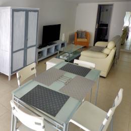 Pièce à vivre : séjour/salon location Mr Venturini Sisteron - Location de vacances - Sisteron