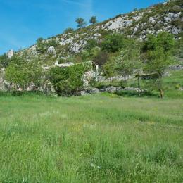 Dans la nature juste au-dessus de la ville. - Location de vacances - Sisteron