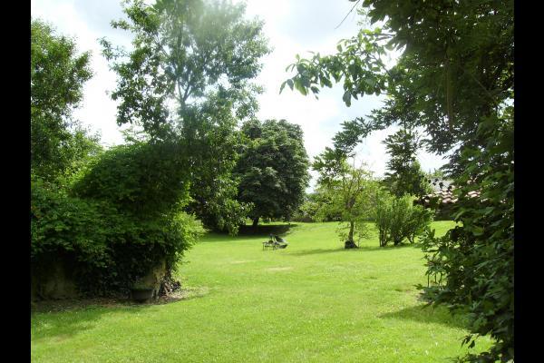 Parc - Location de vacances - Duhort-Bachen