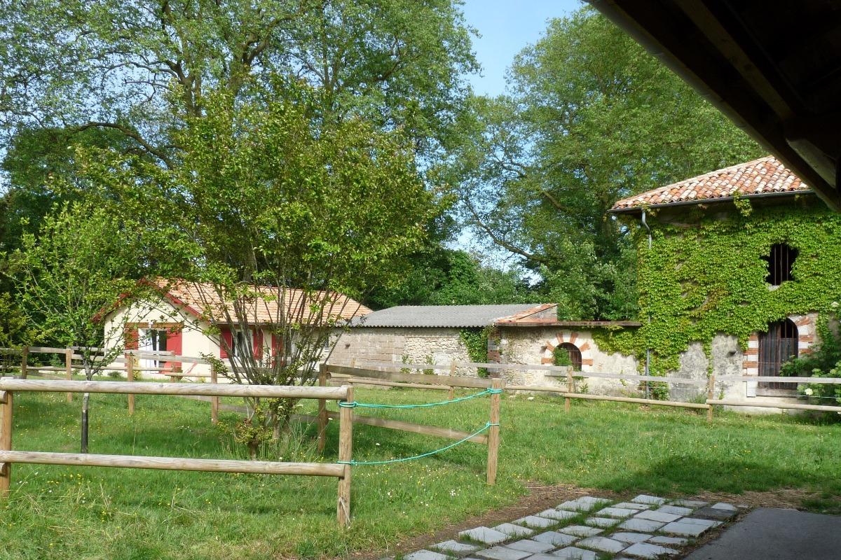 - Location de vacances - Peyrehorade