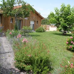 jardin commun  - Location de vacances - Biscarrosse