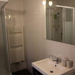 Le Viallon  - Chambre d'hôtes 2 pers, salle d'eau - Chambre d'hôtes - Véranne