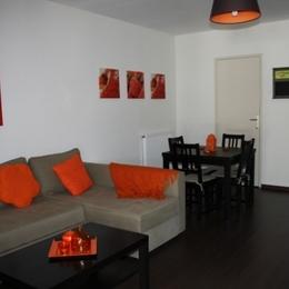 Le Viallon, appartement Salamandre - Pièce de vie - Location de vacances - Véranne