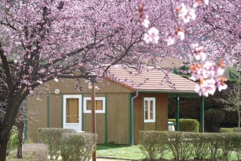 Le Domaine de l'Astree à Bourg Argental - Location de vacances - Bourg-Argental