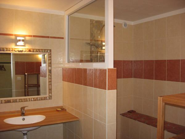 Salle de douche rez de chaussée - Location de vacances - Saint-Pal-de-Chalencon