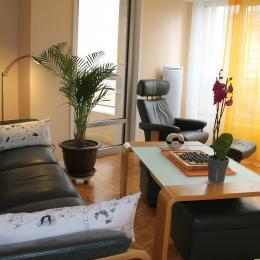 Salon. - Location de vacances - Le Puy-en-Velay