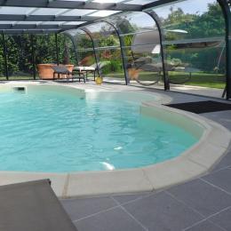 La piscine nage à contre courant sans ajout de chlore - Location de vacances - Rougé