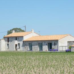 Façade - Location de vacances - Saint-Philbert-de-Grand-Lieu