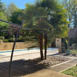 piscine  - Location de vacances - Le Roc