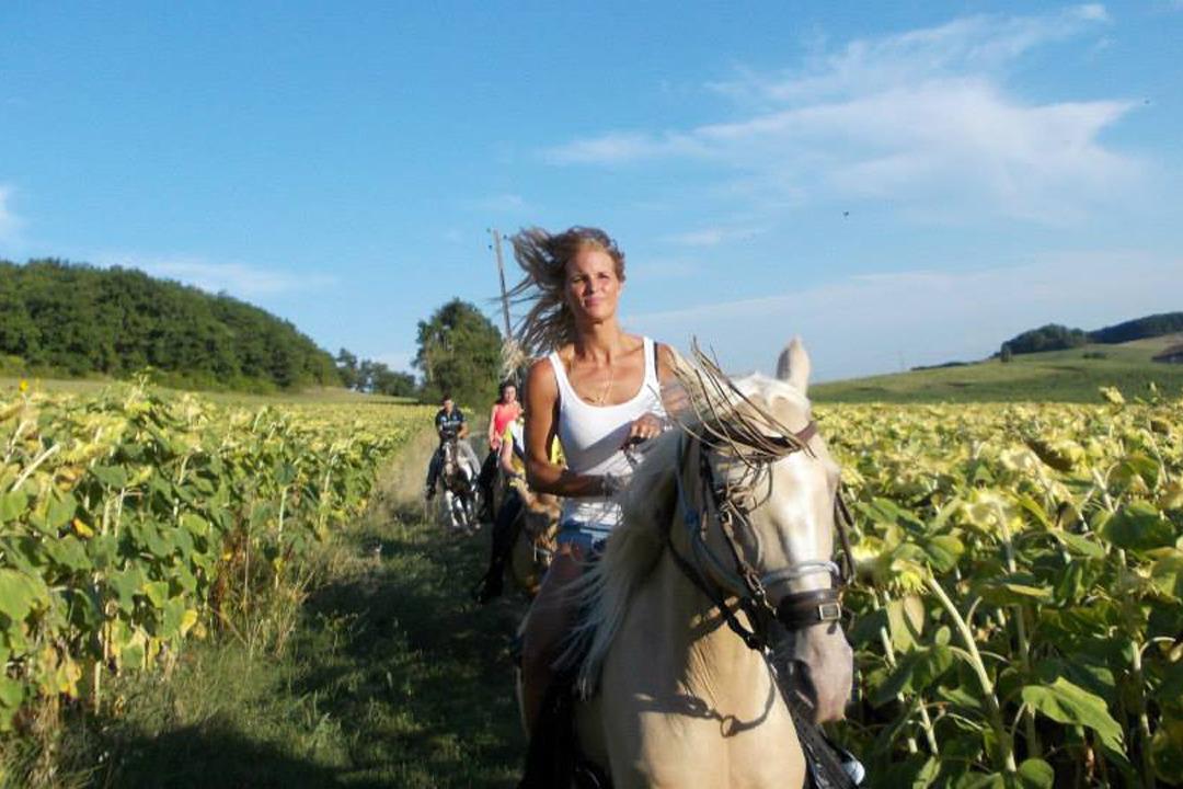 Les randonnées à cheval - Location de vacances - Pinel-Hauterive