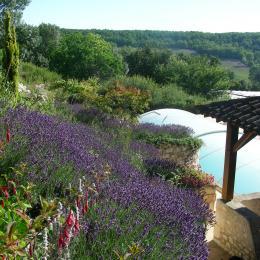 le jardin fleuri surplombant la piscine - Location de vacances - Loubès-Bernac