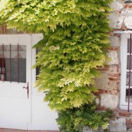L'ancien évier  en pierres - Location de vacances - Penne-d'Agenais