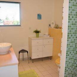 Salle de bains avec douche italienne , lavabo et WC - Chambre d'hôtes - Pont-du-Casse