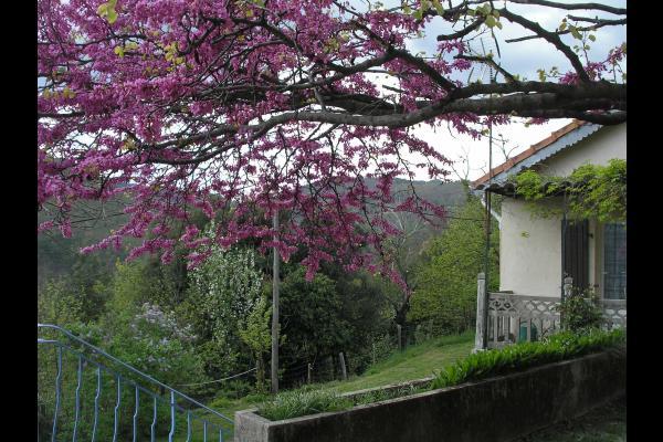 Entrée Gite 1 - Location de vacances - Saint-Martin-de-Boubaux