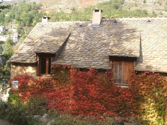 gites en automne - Location de vacances - Le Pont de Montvert