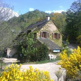Gites du Chastel au printemps - Location de vacances - Le Pont de Montvert