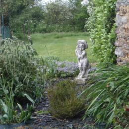 vue sur le coin des plantes - Chambre d'hôtes - Sainte-Gemmes-d'Andigné