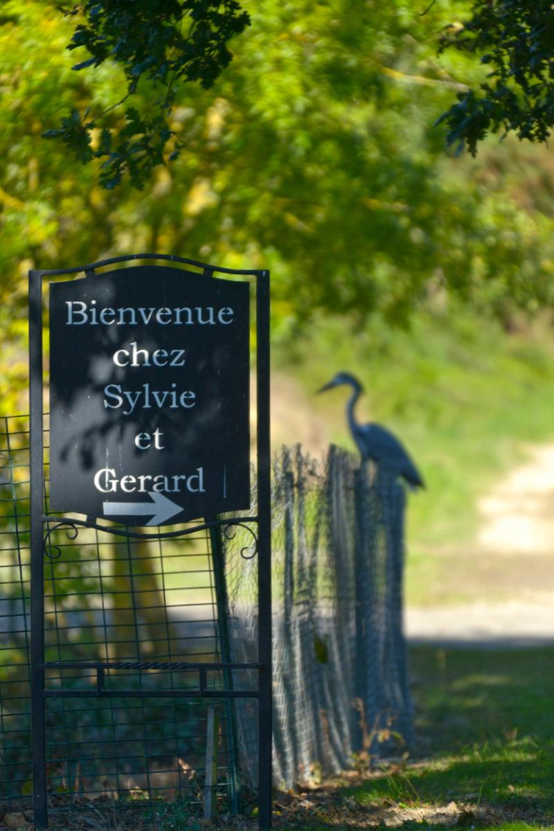 Bienvenue chez Sylvie et Gérard - Chambre d'hôtes - Segré-en-Anjou Bleu